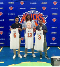 The 3 newest members of the New York Knicks! -Tommy (Photo Credit: Ian Begley) New York Knicks Memes: SEO  CHASEO  CHASE O  CHASEO  ELUVORA  NDAR  CHASE O  CHASE O  CHASE O The 3 newest members of the New York Knicks! -Tommy (Photo Credit: Ian Begley) New York Knicks Memes