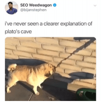 Memes, Best, and Never: SEO Weedwagon  @bijanstephen  i've never seen a clearer explanation of  plato's cave Post 1416: it happens to the best of us