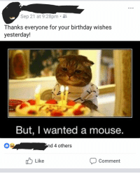 Birthday, Dad, and Grandma: Sep 21 at 9:28pm i  Thanks everyone for your birthday wishes  yesterday!  But, I wanted a mouse.  d 4 others  5 <  Like  Comment My dad is a grandma