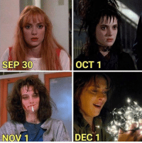 Memes, Best, and Laughter: SEP 30  OCT 1  NOV 1  DEC 1 36 Best Memes That Will Make One Cry With Laughter