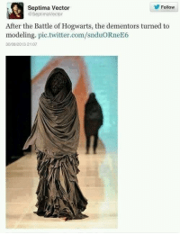 Memes, Models, and 🤖: Septima Vector  Follow  SeptimaVector  After the Battle of Hogwarts, the dementors turned to  modeling. pic twitter.com/snduORneE6  30/08/2013 21 07 ~Dobby
