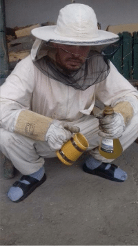 Nature, Serbian, and Slav: Serbian Beekeeper taking care of mother nature for all Slavs out there
