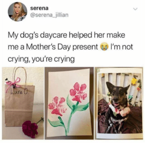 : serena  @serena_jillian  My dog's daycare helped her make  me a Mother's Day present I'm not  crying, you're crying  huna O