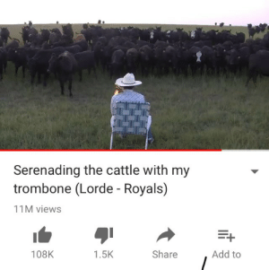 Lorde, Royals, and Add: Serenading the cattle with my  trombone (Lorde - Royals)  11M views  108K  1.5K  Share  Add to