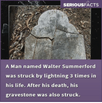 Life, Memes, and Death: SERIOUSFACTS  APS  A Man named Walter Summerford  was struck by lightning 3 times in  his life. After his death, his  gravestone was also struck