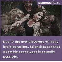 parasitism: SERIOUSFACTS  Due to the new discovery of many  brain parasites, Scientists say that  a zombie apocalypse is actually  possible
