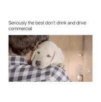 Best, Drive, and Girl: Seriously the best don't drink and drive  commercial i'm in tears 😭 follow @biochemicals for more 🔥