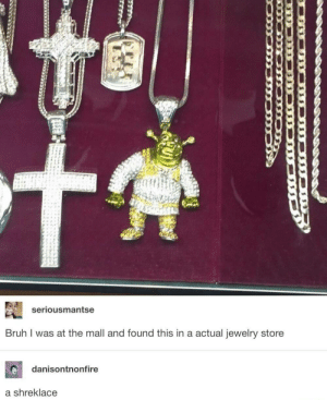 mall: seriousmantse  Bruh I was at the mall and found this in a actual jewelry store  danisontnonfire  a shreklace  KU