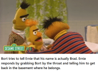 Sesame Street: SESAME STREET  Bort tries to tell Ernie that his name is actually Brad. Ernie  responds by grabbing Bort by the throat and telling him to get  back in the basement where he belongs.