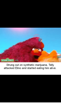 SESAME STREET Strung Out on Synthetic Marijuana Telly