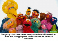 Sesame Street: SESAME STREET  The group photo was subsequently ruined once Elmo decided  NOW was the appropriate time to declare his hatred of  minorities.