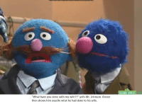 """Sesame Street: SESAME STREET  """"What have you done with my wife??"""" yells Mr. Johnson. Grover  then shows him exactlv what he had done to his wife.  1.1"""