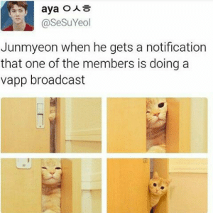 EXO memes: @SeSuYeol  Junmyeon when he gets a notification  that one of the members is doing a  vapp broadcast EXO memes