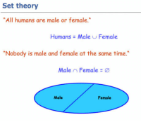 "Tumblr, Blog, and Http: Set theory  All humans are male or female  Humans Male Female  ""Nobody is male and female at the same time  Male , Female  Male  Female <p><a href=""http://awesomacious.tumblr.com/post/170112128159/triggered"" class=""tumblr_blog"">awesomacious</a>:</p>  <blockquote><p>Triggered!</p></blockquote>"