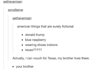 Donald Trump, Shoes, and American: setheverman:  songllama:  setheverman:  american things that are surely fictional:  . donald trump  blue raspberry  wearing shoes indoors  e texas?????  Actually, I can vouch for Texas, my brother lives there.  your brother Fictional American things