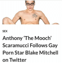 Not satire: SEX  Anthony 'The Mooch'  Scaramucci Follows Gay  Porn Star Blake Mitchell  on Twitter Not satire