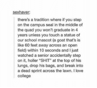"""College, Love, and School: sexhaver:  there's a tradition where if you step  on the campus seal in the middle of  the quad you won't graduate in 4  years unless you touch a statue of  our school mascot (a goat that's is  like 60 feet away across an open  field) within 10 seconds and ljust  watched a senior accidentally step  on it, holler """"SHIT"""" at the top of his  lungs, drop his bags, and break into  a dead sprint across the lawn. l love  college college https://t.co/dTUNepc5B9"""