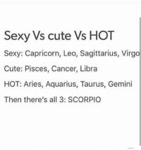 Cute, Sexy, and Aquarius: Sexy Vs cute Vs HOT  Sexy: Capricorn, Leo, Sagittarius, Virgo  Cute: Pisces, Cancer, Libra  HOT: Aries, Aquarius, Taurus, Gemini  Then there's all 3: SCORPIO