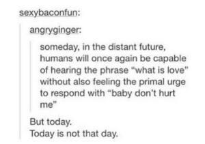 "Future, Love, and Today: sexybaconfun:  angryginger:  someday, in the distant future,  humans will once again be capable  of hearing the phrase ""what is love""  without also feeling the primal urge  to respond with ""baby don't hurt  me""  But today.  Today is not that day. meirl"