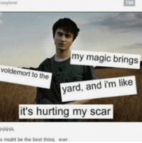 Best, Magic, and Haha: seylove  780  my magic brings  voldemort to the  yard, and i'm like  it's hurting my scar  HAHA  s might be the best thing, ever