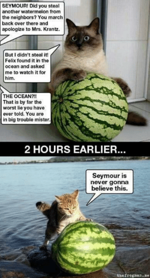 Omg, The Worst, and Tumblr: SEYMOUR! Did you steal  another watermelon from  the neighbors? You march  back over there and  apologize to Mrs. Krantz.  But I didn't steal it!  Felix found it in the  ocean and asked  me to watch it for  him  THE OCEAN?!!  That is by far the  worst lie you have  ever told. You are  in big trouble mister  2 HOURS EARLIER.  Seymour is  never gonna  believe this.  thefrosnan.ze omg-images:That's how it happened