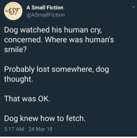 Lost, Good, and How To: sg  A Small Fiction  @ASmallFiction  Dog watched his human cry,  concerned. Where was human's  smile?  Probably lost somewhere, dog  thought.  That was OK  Dog knew how to fetch.  5:17 AM 24 Mar 18 Good Dog