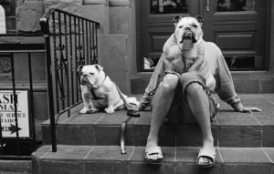 Photography, Service, and Mat: SH  MAT  F SERVICE  TAIRS  R The humorous photography of Elliott Erwitt.