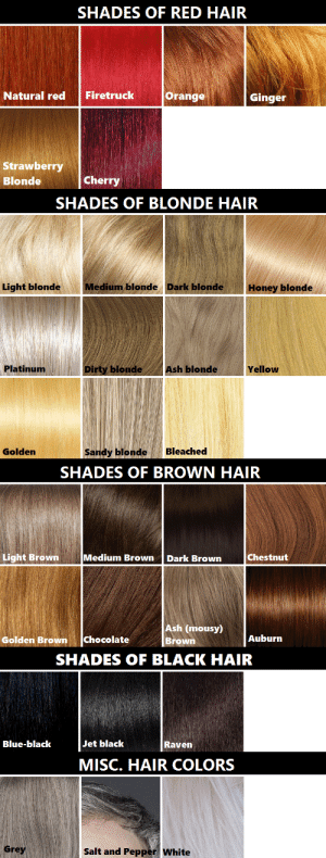 the-lady-of-reichenbach: smaugnussen:  goddessofsax:  Hair color reference chart. It's not perfect, but from what I could gather it's pretty accurate.  dont let the fanfic writers see this  too late : SHADES OF RED HAIR  Orange  Firetruck  Natural red  Ginger  Strawberry  Cherry  Blonde   SHADES OF BLONDE HAIR  Medium blonde Dark blonde  Light blonde  Honey blonde  Dirty blonde  Platinum  Ash blonde  Yellow  Sandy blonde  Bleached  Golden   SHADES OF BROWN HAIR  Chestnut  Light Brown  Medium Brown  Dark Brown  Ash (mousy)  Brown  Auburn  Chocolate  Golden Brown   SHADES OF BLACK HAIR  Jet black  Blue-black  Raven   MISC. HAIR COLORS  Grey  Salt and Pepper White the-lady-of-reichenbach: smaugnussen:  goddessofsax:  Hair color reference chart. It's not perfect, but from what I could gather it's pretty accurate.  dont let the fanfic writers see this  too late