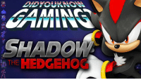 Check out the latest Did You Know Gaming?, Shadow the Hedgehog! https://www.youtube.com/watch?v=txUuZwCQtSE&list=PL26D7E5A7D29CCAB3: SHADO Check out the latest Did You Know Gaming?, Shadow the Hedgehog! https://www.youtube.com/watch?v=txUuZwCQtSE&list=PL26D7E5A7D29CCAB3