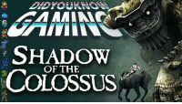 Check out the latest Did You Know Gaming?, Shadow of the Colossus! https://www.youtube.com/watch?v=sv4LtoYoHSE&list=PL26D7E5A7D29CCAB3: SHADOW  OF THE  COLOSSUS Check out the latest Did You Know Gaming?, Shadow of the Colossus! https://www.youtube.com/watch?v=sv4LtoYoHSE&list=PL26D7E5A7D29CCAB3