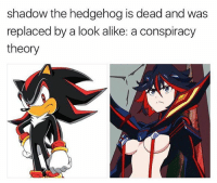 Hedgehog, Mean, and Conspiracy: shadow the hedgehog is dead and was  replaced by a look alike: a conspiracy  theory hi I was wondering if y'all could vote for @tomodachie on @bnhaawards for number one kacchan lover? it would mean a lot uwu - tomo killlakill