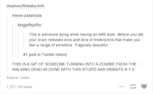 makeuphall:  CHALLENGE: Can you get through these 33 funny tumblr posts without laughing once? : shadowofthelabyrinth  meow-zaxaroula  kingjaffejoffer:  This is someone dying while having an MRI scan. Before you die,  your brain releases tons and tons of endorphins that make you  feel a range of emotions. Tragically beautiful  #1 post in Tumblr history  THIS IS A GIF OF SOMEONE TURNING INTO A ZOMBIE FROM THE  WALKING DEAD IM DONE WITH THIS STUIPD ASS WEBSITE B YE  Source: ruoloc  1,251,118 notes makeuphall:  CHALLENGE: Can you get through these 33 funny tumblr posts without laughing once?