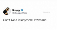 Finally coming out @drgrayfang: Shaggy  @ShaggyOfficial  drgrayfang  Can't live a lie anymore. It was me Finally coming out @drgrayfang