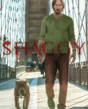 The 19 Funniest Shaggy Memes! Here is a funny photo of Keanu Reeves as Shaggy form Scooby Doo! Which of these is the most hilarious meme about Shaggy? #LOL #Memesdaily #Humor #Funynphotos #Scoobydoo: SHAGGY The 19 Funniest Shaggy Memes! Here is a funny photo of Keanu Reeves as Shaggy form Scooby Doo! Which of these is the most hilarious meme about Shaggy? #LOL #Memesdaily #Humor #Funynphotos #Scoobydoo