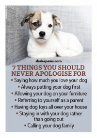Family, Love, and Memes: shakepaws.com  7 THINGS YOU SHOULD  NEVER APOLOGISE FOR  Saying how much you love your dog  Always putting your dog first  . Allowing your dog on your furniture  Referring to yourself as a parent  Having dog toys all over your house  Staying in with your dog rather  than going out  Calling your dog family Absolute truth!   **Cherie**