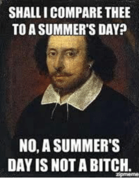 "Bitch, Meme, and Shakespeare: SHALLI COMPARE THEE  TO A SUMMER'S DAY?  NO, A SUMMER'S  DAY IS NOT A BITCH.  Zpmeme This meme shows the irony in how Shakespeare's work is regarded by many. The ""poet"" writes sonnet 18 for his beloved, and in comparing the youth to a summer day, the poet tries to immortalize the youth in a poem. Many think Shakespeare writes in ""old english"" and that everything has a beguiled meaning.  Something that was created to immortalize beauty could ironically be taken as an insult by someone who think's Shakespeare's work is too difficult. Source: Transmedial Shakespeare - Jake Mendel"