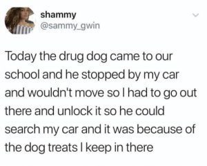 School, Search, and Today: shammy  @sammy_gwin  Today the drug dog came to our  school and he stopped by my car  and wouldn't move so I had to go out  there and unlock it so he could  search my car and it was because of  the dog treats I keep in there