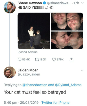 This joke has probably already been made but I couldn't help myself: Shane Dawson @shanedaws... 17h  Ryland Adams  53.4K 186K 979K  Jaiden Moar  @JazzyJaiden  Replying to @shanedawson and @Ryland_Adams  Your cat must feel so betrayed  6:40 pm 20/03/2019 Twitter for iPhone This joke has probably already been made but I couldn't help myself