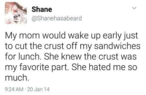 Dank, Memes, and Target: Shane  @Shanehasabeard  My mom would wake up early just  to cut the crust off my sandwiches  for lunch. She knew the crust was  my favorite part. She hated me so  much  9:24 AM-20 Jan 14 Me irl by northkorearesident MORE MEMES