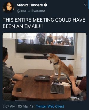 Blackpeopletwitter, Twitter, and Email: Shanita Hubbard  @msshanitarenee  THIS ENTIRE MEETING COULD HAVE  BEEN AN EMAIL!!  7:07 AM 05 Mar 19 Twitter Web Client All my meetings. (via /r/BlackPeopleTwitter)