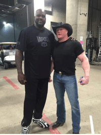 Shaq can even make s beast like Brock Lesnar look small