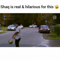 Funny, Police, and Shaq: Shaq is real & hilarious for this  B GAINESVILLE PD  GAINESVILLE POLICE  Hoodclips com 😂 got'em