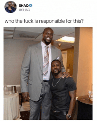 Internet, Memes, and Shaq: SHAQ  @SHAQ  who the fuck is responsible for this? @drgrayfang is the best thing to happen to the internet.