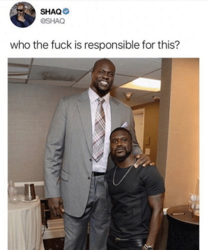Dank, Memes, and Shaq: SHAQ  @SHAQ  who the fuck is responsible for this? Who the fuck did this by jim_par MORE MEMES
