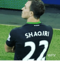 Memes, Sublime, and Chip: SHAQIRI  WFV Sublime chip but a better celebration from @shaqirixherdan 👏 - Follow us for more vids ✅
