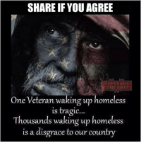 Homeless, Memes, and Soldiers: SHARE IF YOU AGREE  VETERANS  One Veteran waking up homeless  is tragic..  Thousands waking up homeless  is a disgrace to our country This is a disgrace... veteranscomefirst veterans_us Veterans Usveterans veteransUSA SupportVeterans Politics USA America Patriots Gratitude HonorVets thankvets supportourtroops semperfi USMC USCG USAF Navy Army military godblessourmilitary soldier holdthegovernmentaccountable RememberEveryoneDeployed Usflag StarsandStripes