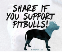 Share if you support pitbulls!   Get your pitbull awareness shirt here : http://hendrickboards.com/index.php?route=product/search&search=breed: SHARE MF  YOU SUPPORT  PITBULLS!  HENDRICK & Co. Share if you support pitbulls!   Get your pitbull awareness shirt here : http://hendrickboards.com/index.php?route=product/search&search=breed