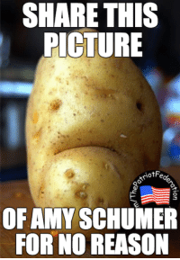 Looks like a potato, acts like a nut.: SHARE THIS  PICTURE  otriotFe  OF AMY SCHUMER  FOR NO REASON Looks like a potato, acts like a nut.