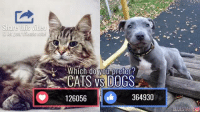 Dank, Dogs, and Emoji: Share this video  & let your frienisvoitel  Which  do  CATS VS DOGS  126056  364930  LUESTAFFYO Let's settle this. Cats or Dogs? Vote with the emojis below!  via Awwsome