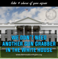 Memes, White House, and House: share you agree  WE DON'T NEED  ANOTHER GUN GRABBER  IN THE WHITE HOUSE  www National GunRights.org PASS THIS ON IF YOU AGREE!